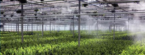 پکیج مه پاش نیمه صنعتی