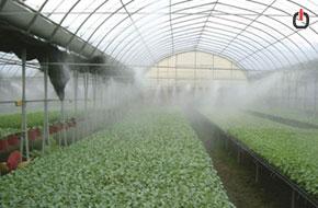 مه پاش یا فوگر